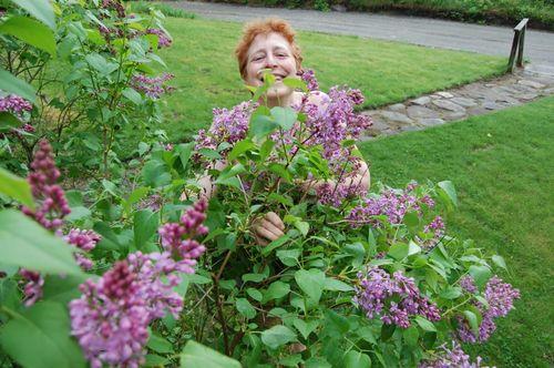 Lilacs nude 1