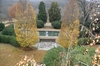 Cheekwood_pool