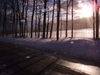 Late_afternoon_snow